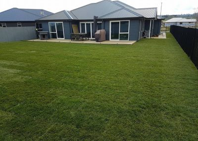 Ready Lawn Before and After